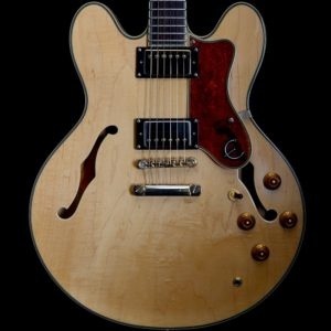Arch Top Guitars | Electric Guitars | Abbey Road Music